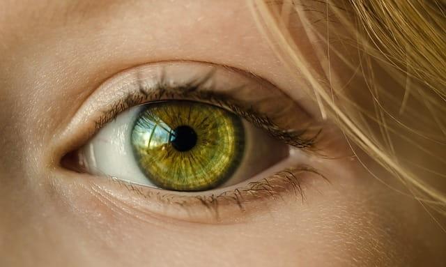 Le traitement des troubles psychologiques par le mouvement oculaire.
