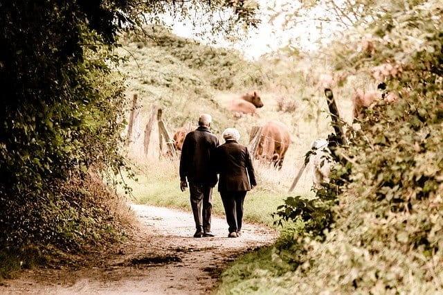 Deux personnes âgées se promènent en nature